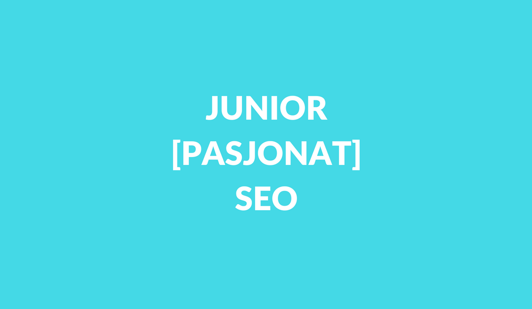 Junior SEO